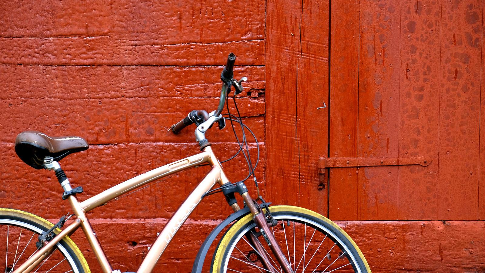 Serena Tang bikes in Iceland (Photo by Serena Tang)