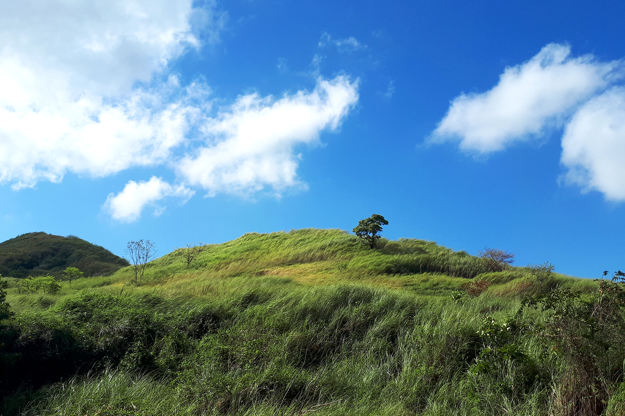 Bugarin Climb View